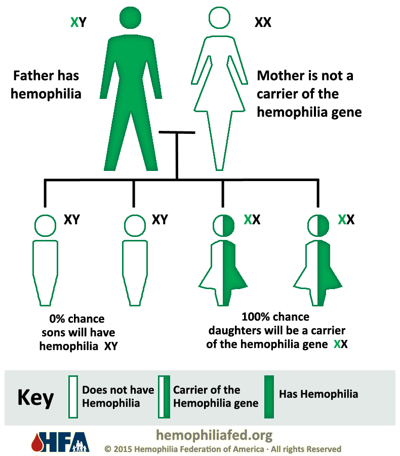 characteristics of hemophilia a genetic bleeding disorder Symptoms of such internal bleeding can be difficult  this results in the painful  arthritic condition  genetic testing is available to identify the genetic change  causing hemophilia.